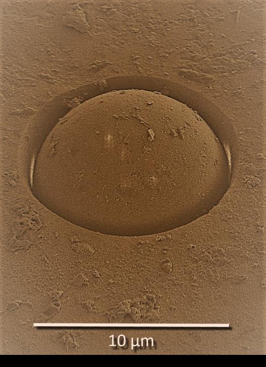 Micro Mars